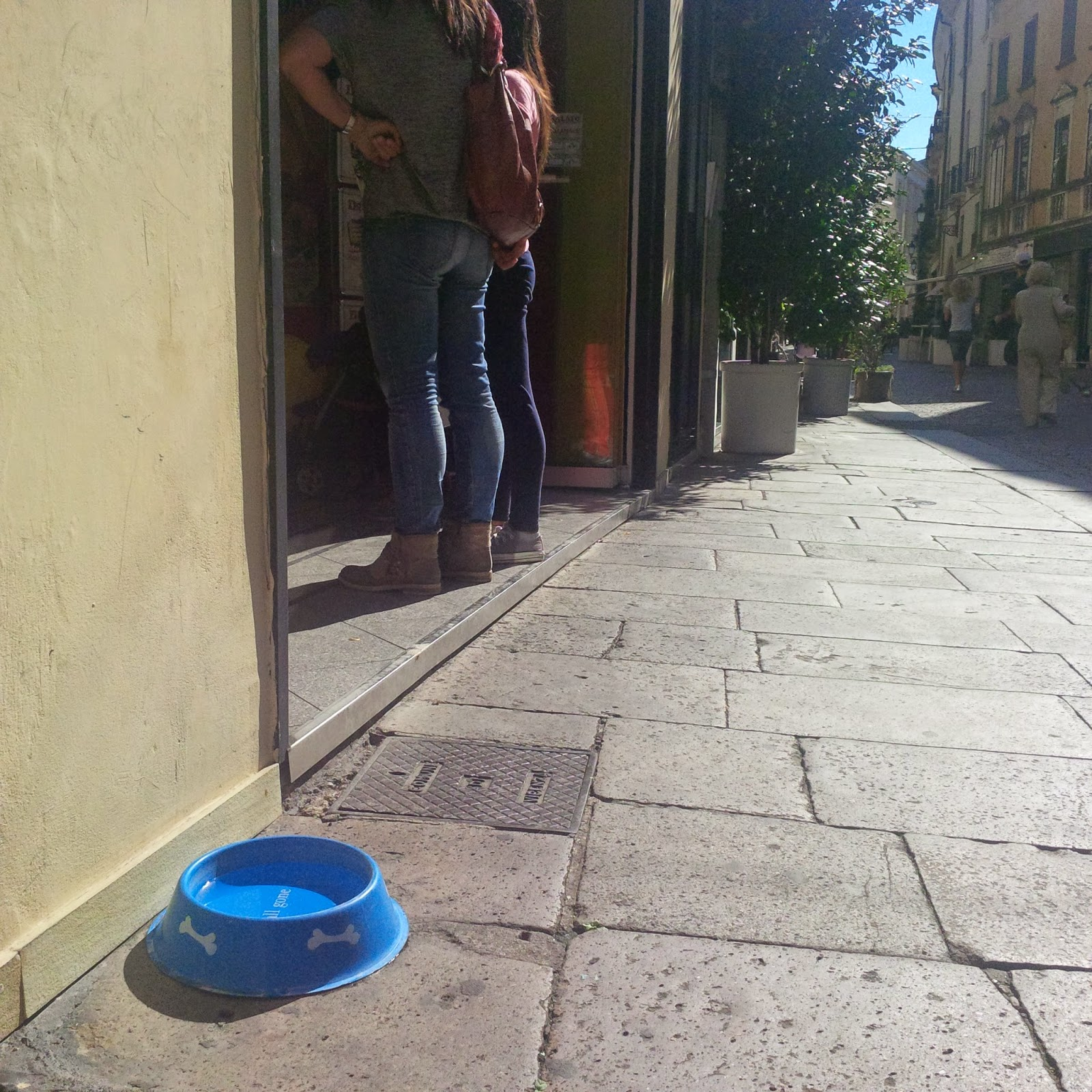 A water bowl is left outside a shop in Vicenza for passing dogs