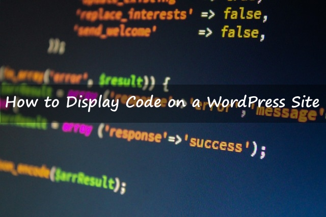 How to Display Code on a WordPress Site Publish