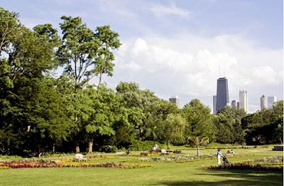 trung tâm thành phố chicago