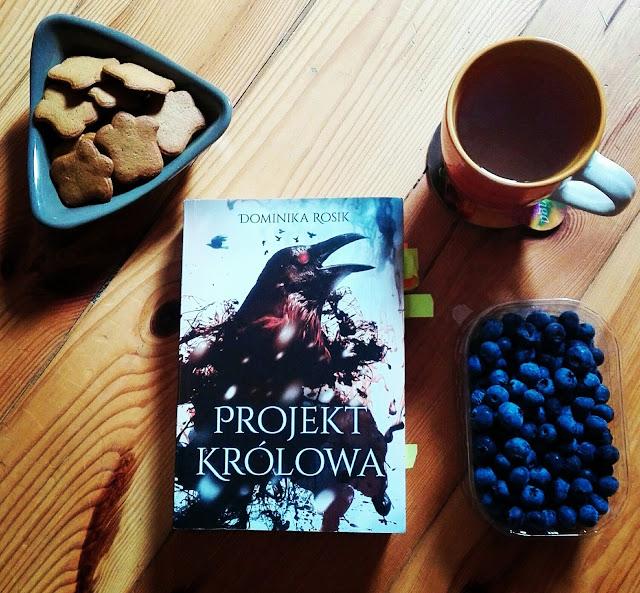"""D. Rosik - """"Projekt Królowa"""""""