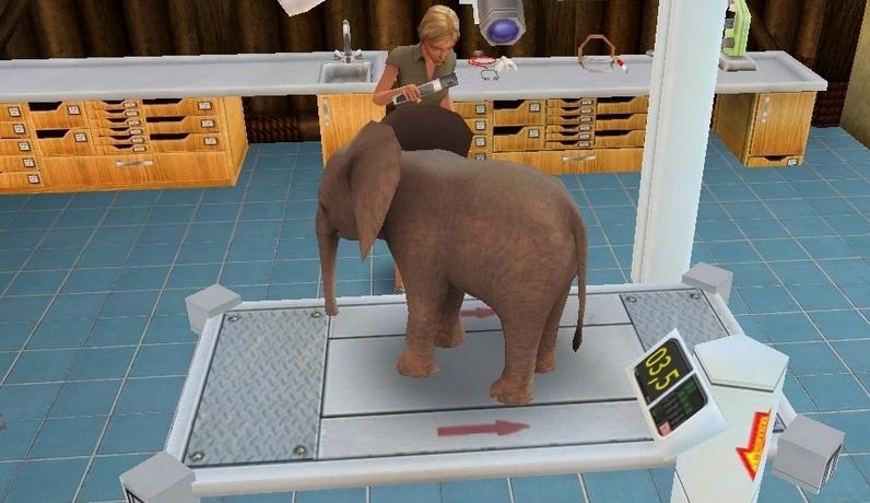 Paws & Claws Pet Vet 2: Healing Hands Žaidimai mergaitėms
