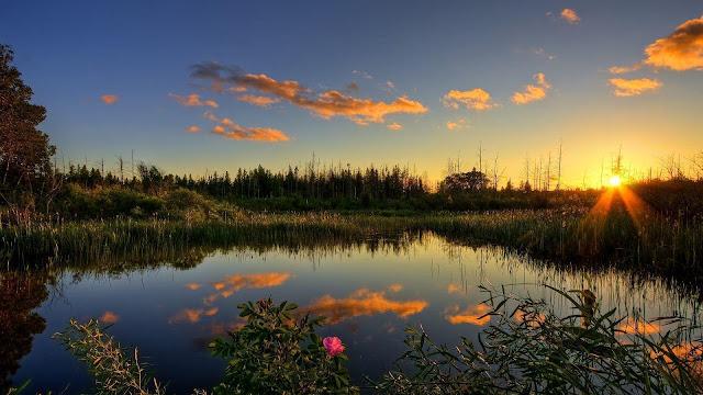 beautiful sunset wallpaper download