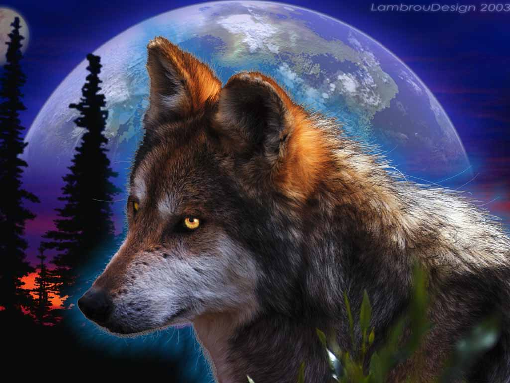 High Quality Wallpapers : 3d Wolf Photos