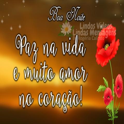 Paz na vida  e muito amor  no coração!  Boa Noite!