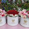 Flower Box 070717