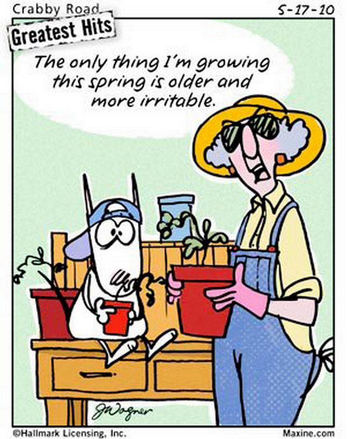 maxine gardening funny spring jokes humor cartoons garden quotes growing older cartoon snow sayings acid comics fun comic aging planting