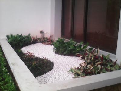 taman rumah indoor