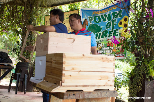 [Events] Introduction Honeybee Farming Training at Paradizoo Tagaytay