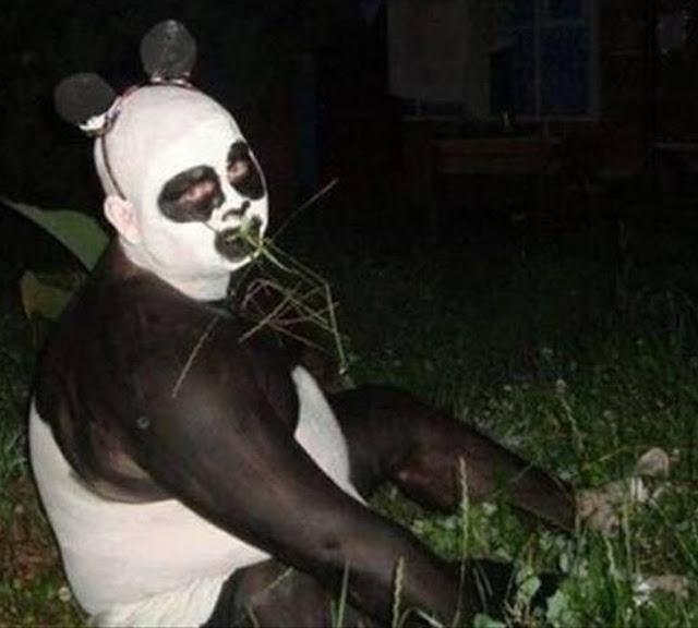 Eu sou um panda
