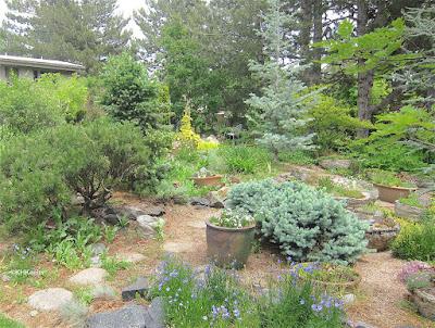 garden, Fort Collins, CO
