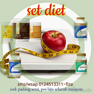 http://sweetnyer.blogspot.com/2014/04/set-diet-shaklee.html