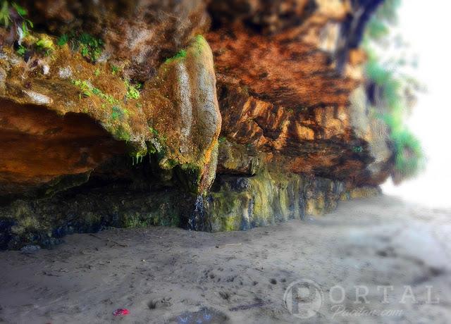 sensasi-bawah-laut-wisata-pantai-puring-sidomulyo-1