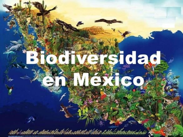 biodiversidad mexico