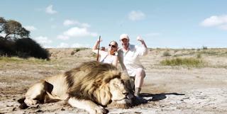 Κυνηγοί σκότωσαν ένα λιοντάρι. Όταν πήγαν να το βγάλουν Φωτογραφία, Δεν είχαν Ιδέα τι τους Περίμενε…