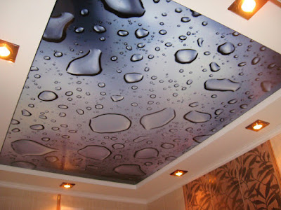 3d photo printing ceiling murals and ceiling art designs