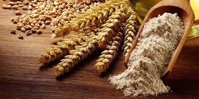 Biji Gandum (Wheat Germ)