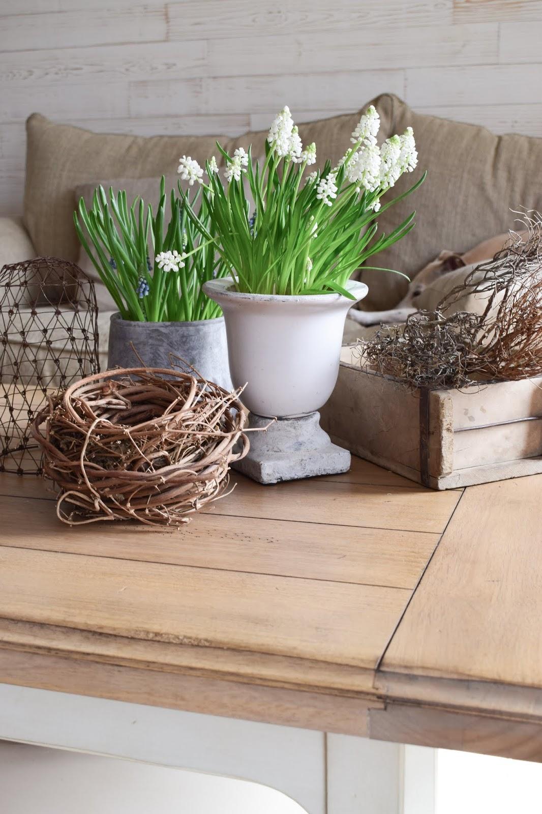 Deko Perlhyazinthen Tischdeko Dekoidee Wohnzimmer Interior natürlich dekorieren Dekotipp Holzdeko Landhausdeko Landhausstil Landhaus