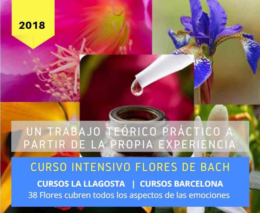 Curso intensivo de flores de Bach , por merçe Criado. Cursos integrados de deixalatevaempremta.org
