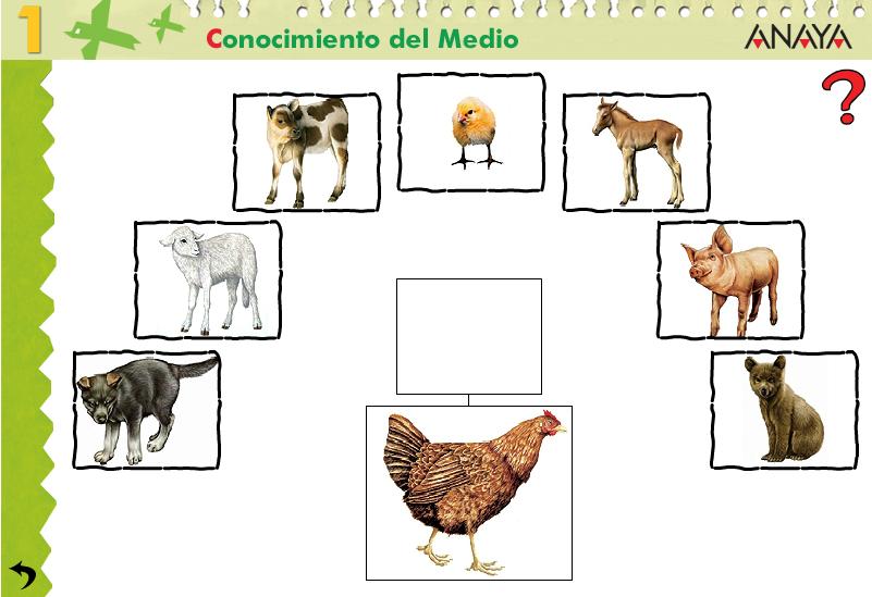 http://www.ceiploreto.es/sugerencias/A_1/Recursosdidacticos/PRIMERO/datos/03_cmedio/03_Recursos/actividades/2losAnimales/act3.htm