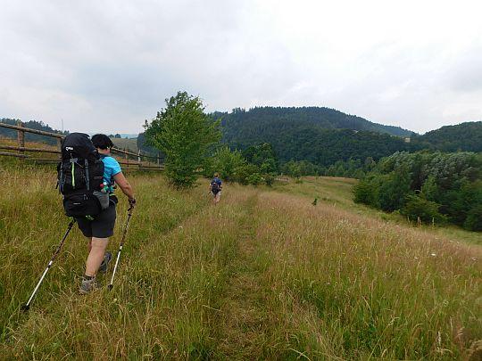 Zejście przez pastwiska do Jerzykowic Wielkich.