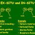 EX- SITU CONSERVATION STRATEGIES