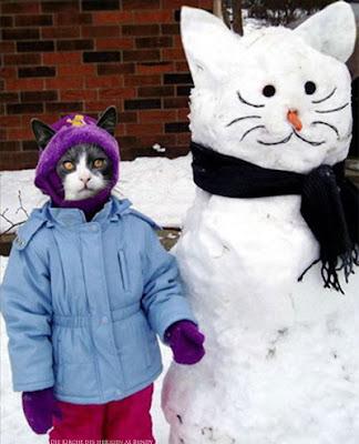 Witzige Schneemann Idee - Schneekatze Spaßbilder Katzen