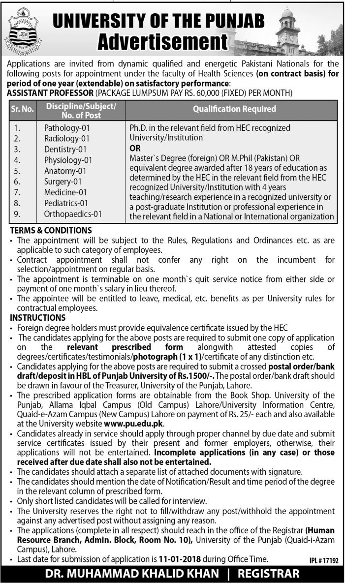 Jobs In PU University Of The Punjab Dec 2017