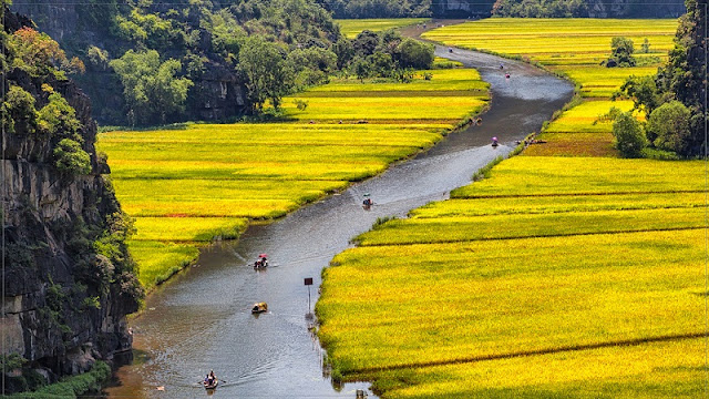 Amazing experience: watching the rice season in Tam Coc from the Dance cave