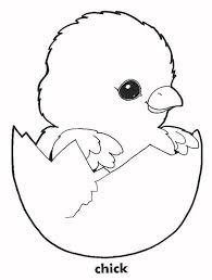C For Baby Chic Coloring Pages For Kids