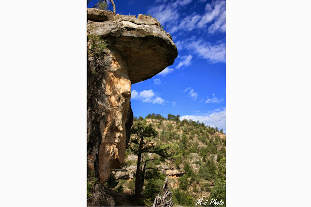 M-ii Photo : Walnut Canyon National Monument