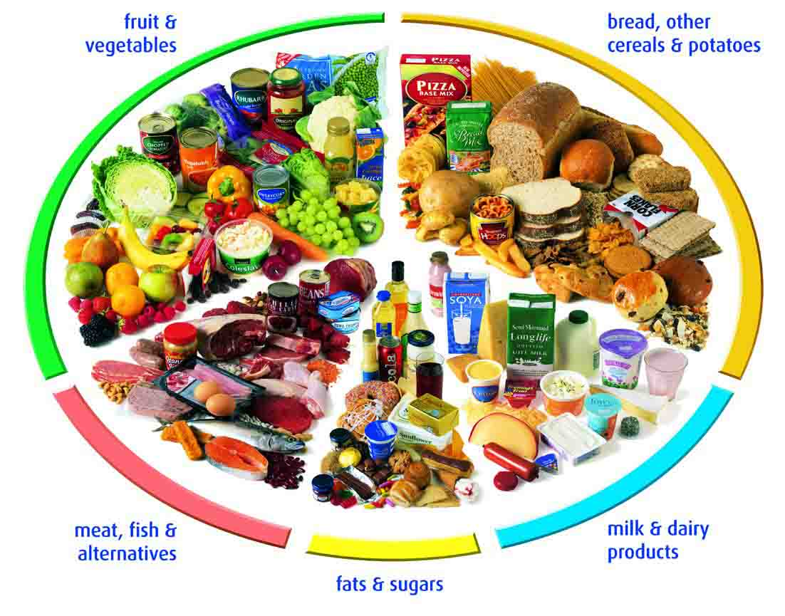 Nutrition Nutritious Food Types Information