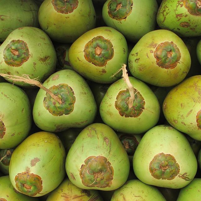 Manfaat air kelapa hijau untuk ibu hamil