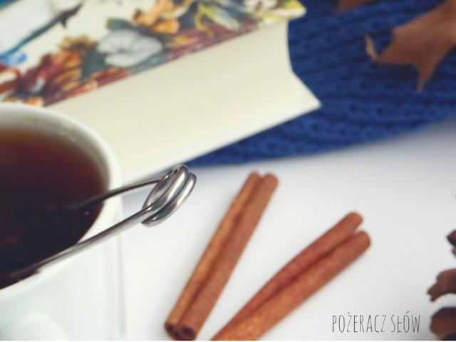 klub pickwicka, cynamon, szyszka, liście, herbata, sweter, zaparzacz do herbaty IKEA