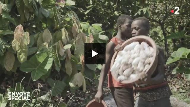 Envoyé spécial : Cacao, les enfants pris au piège