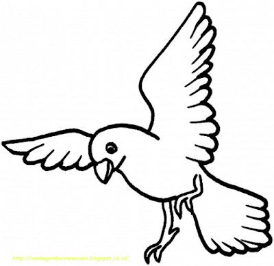 Gambar Mewarnai Burung - 12