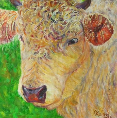 Cow, curly hair, vibrant colors - SOLD!