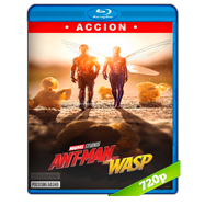 Ant-Man and The Wasp. El hombre hormiga y La avispa (2018) BRRip 720p Audio Dual Latino-Ingles