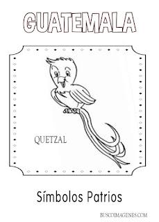 Descarga gratis dibujos de Quetzal para colorear