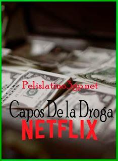 Capos de la droga Temporada 1 (2018) | DVDRip Latino HD GDrive 1 Link