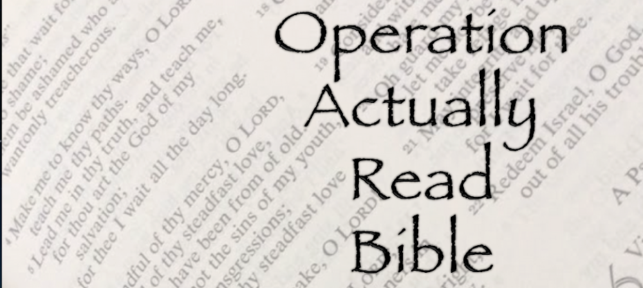 Operation Actually Read Bible: Book Review: My First Read