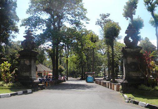 Bedugul Botanical Garden & Bali Treetop - Botanic Garden Conservation International Bali (BGCI) Indonesia