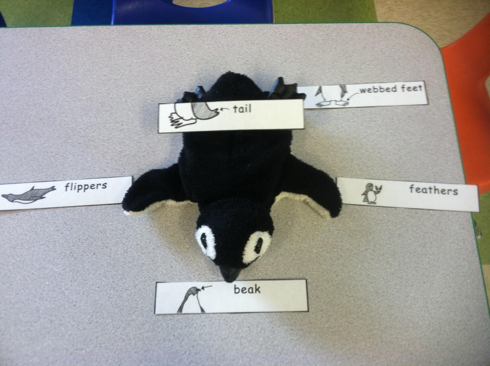 Discovery Kidzone Montessori Adventures More Penguin