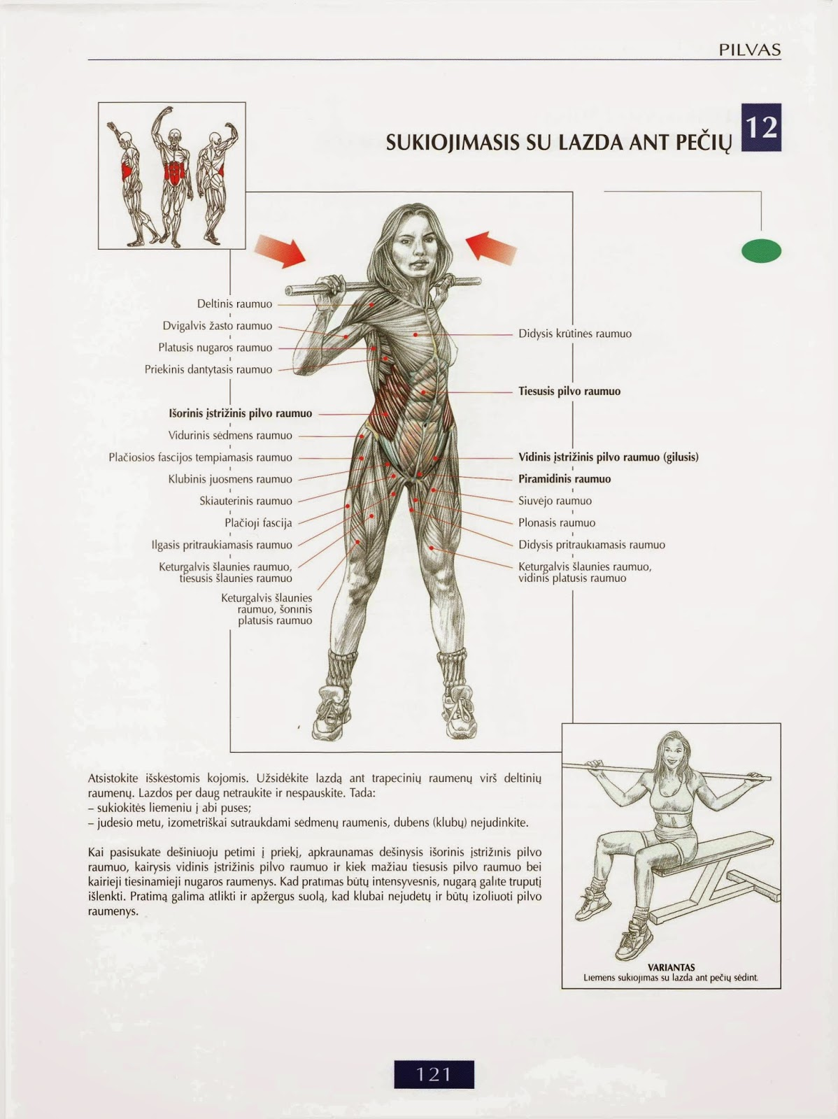 Pilvas | Pratimai raumenims