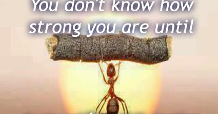 You Dont Know How Strong You Are Until Best English Quotes