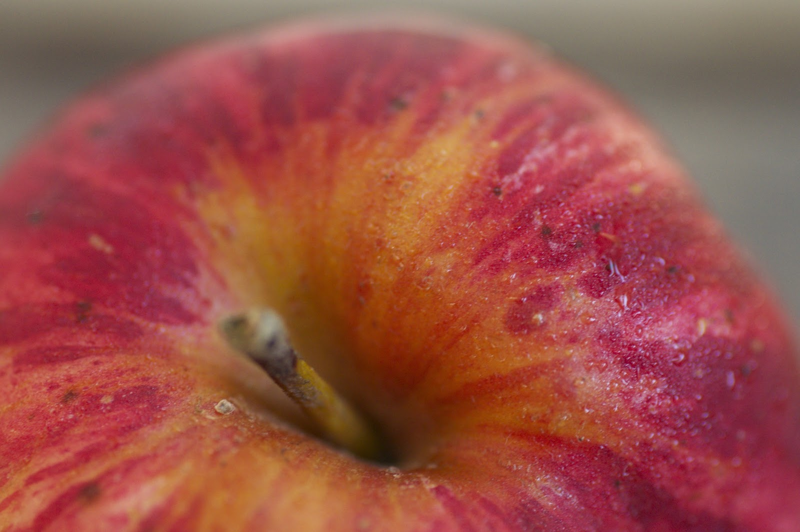 inspired by apple - photo #42
