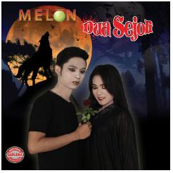 Download Lagu Mahesa & Vita Alvia Mp3 Full Album Melon Dua Sejoli