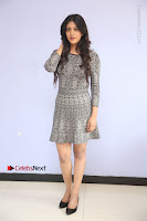 Actress Chandini Chowdary Pos in Short Dress at Howrah Bridge Movie Press Meet  0104.JPG