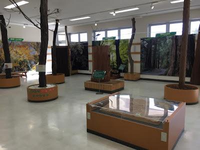 御岳ビジターセンター 2階の展示