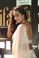 Prajna in Cream Choli transparent Saree Amazing Spicy Pics ~  Exclusive 064.JPG