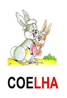 cartaz lh de coelha